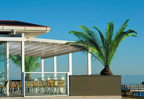 retractable-awnings-palm-tree