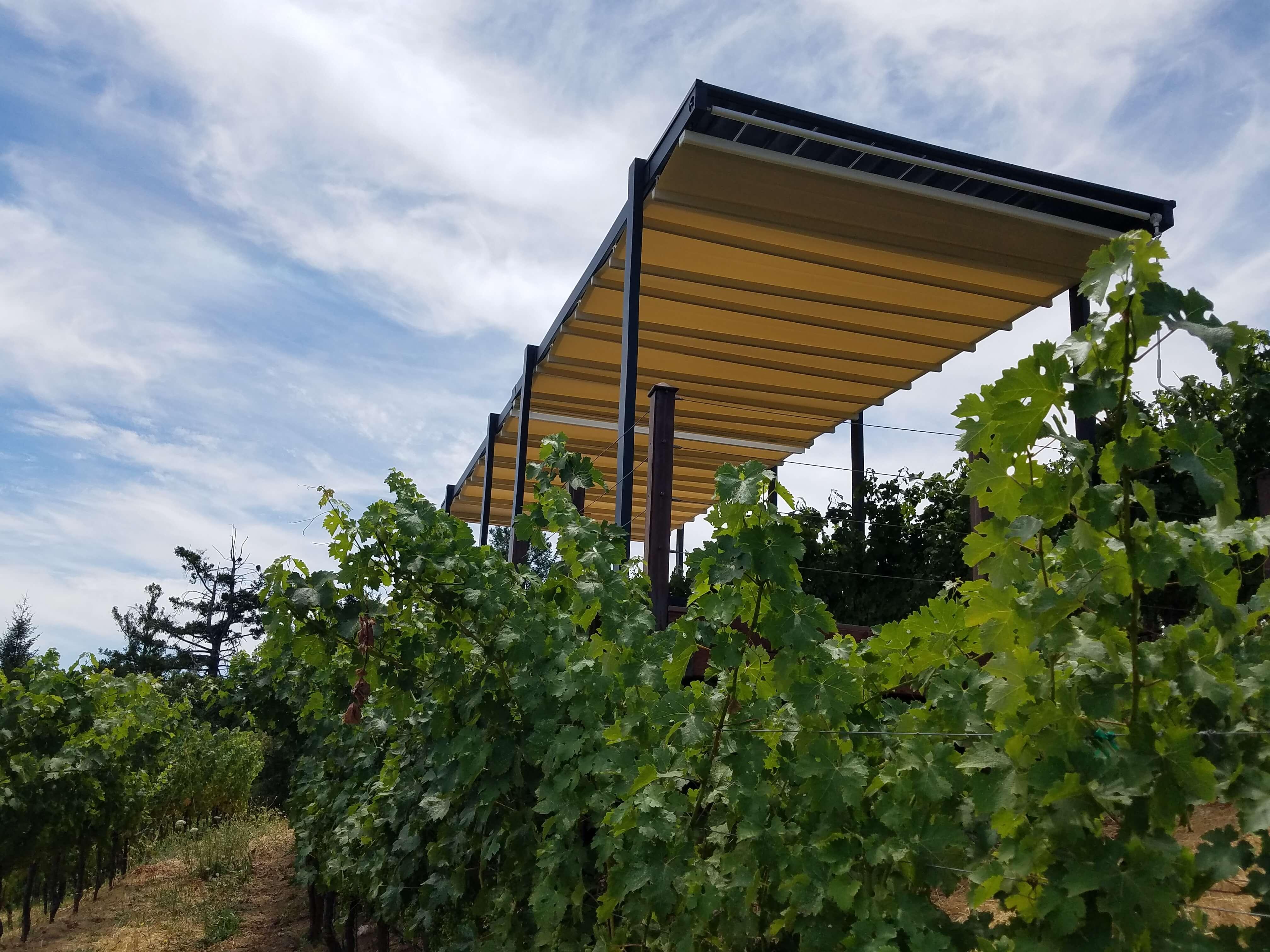 Projects 2018 Newton Vineyards Napa California