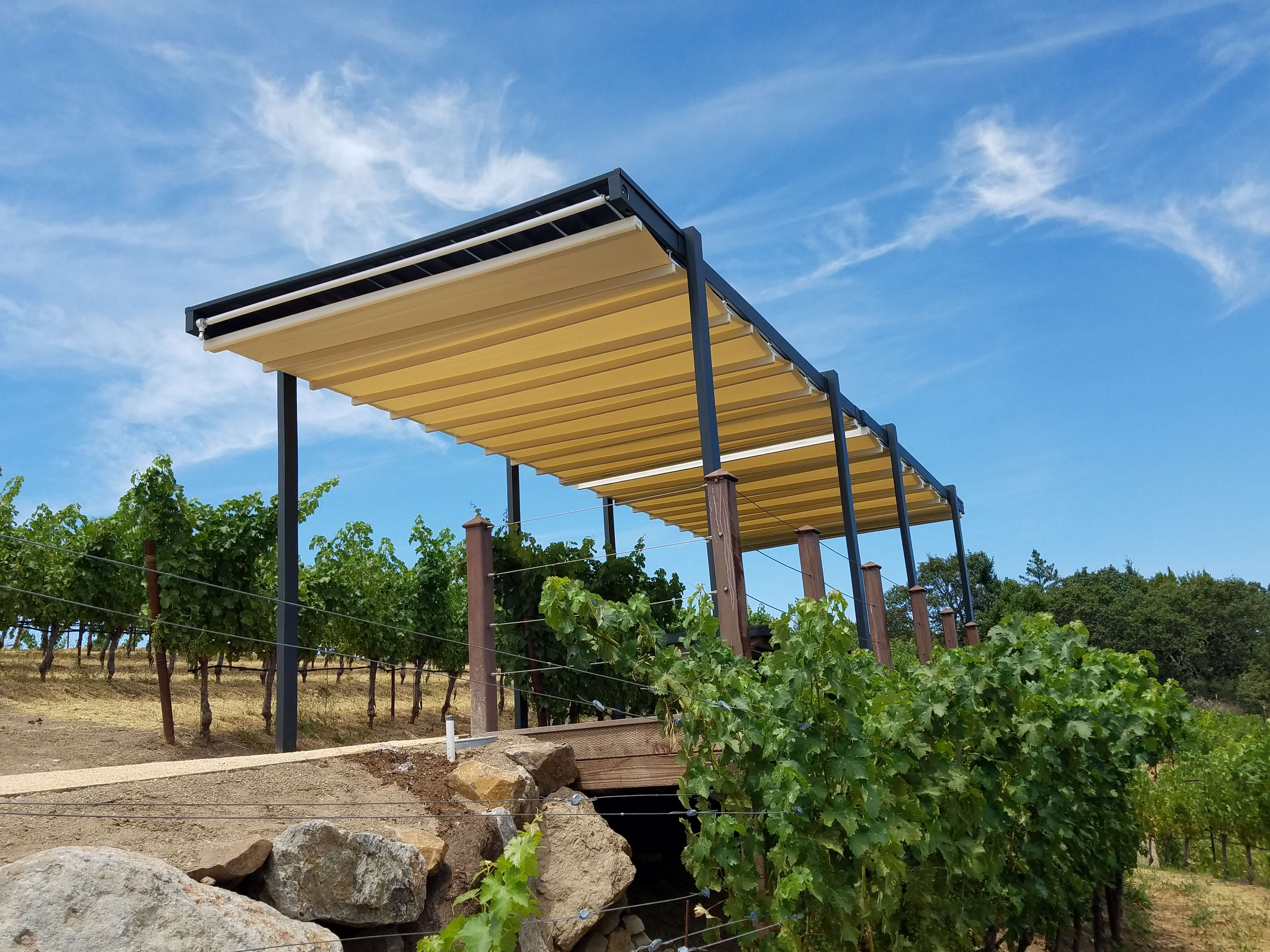 Projects 2018 Newton Vineyards Napa California